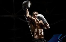 Punching boxer on boxing ring royalty free stock photo