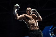 Punching boxer on boxing ring. Black bacground, horizontal photo stock photography