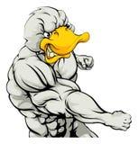 Punching duck mascot Stock Photo