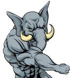 Punching elephant mascot Stock Images
