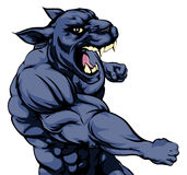 Punching panther mascot. A mean looking panther sports mascot fighting and punching with fist Royalty Free Stock Photos