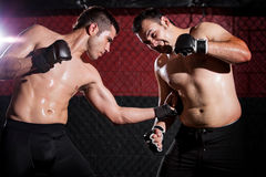 Punching in the ribs on a MMA fight Stock Photography