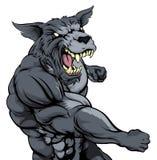 Punching wolf mascot Stock Photography