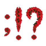 Punctuation of flowers Stock Image