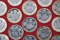 Pund för brittisk ett pund sterling på röd bakgrund Royaltyfri Fotografi
