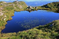 Pund i berget Urliken Royaltyfri Foto