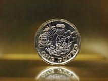 1 pund mynt, Förenade kungariket över guld Royaltyfri Bild