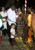 Pune, India - November 7, 2015: People in India worshipping the. Cow on the occasion of Diwali festival in India on Vasubaras day Stock Photography