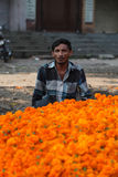 Pune, India - October 21, 2015: Dassera Sale. Pune, India - October 21, 2015: A flower seller with his marigold flowers  in India, on the eve of Dassera festival Stock Photos
