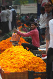 Pune, India - October 21, 2015: Weighing Marigold. Pune, India - October 21, 2015: A seller weighing a bag of marigold flowers before selling it in his Royalty Free Stock Photography