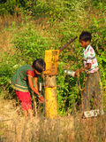 Pune, Indien - 20. November 2013: Zwei indischer Kinderversuch zu erhalten Stockfotografie