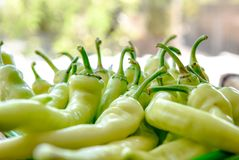 Pungent bouquet of pepper. Green yellow pods on the counter market. pepper, Cayenne pepper, Pungent bouquet of pepper stock image