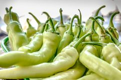 Pungent bouquet of pepper. Green yellow pods on the counter market. pepper, Cayenne pepper, Pungent bouquet of pepper royalty free stock image
