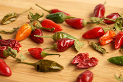 Pungent small pepper Royalty Free Stock Image