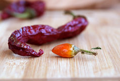 Pungent small pepper Stock Image
