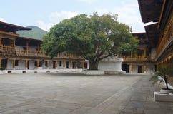Pungtang Dechen Photrang Dzong o palacio de la gran dicha Visión interna Centro administrativo Punakha Dzong imagenes de archivo