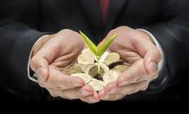 Punhado com moedas e a única semente Foto de Stock Royalty Free