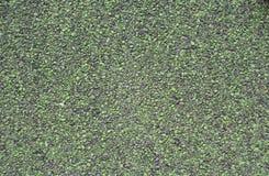 Punhado de pedras pequenas Fotos de Stock Royalty Free