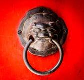 Punho da cabeça do leão Fotografia de Stock