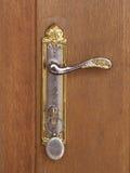 Punho de porta dourado Imagem de Stock