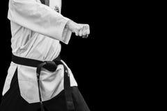 Punho masculino coreano tradicional do perfurador do lutador de Taekwondo Imagem de Stock Royalty Free