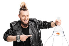 goldfisch in der tasche lizenzfreie stockbilder bild. Black Bedroom Furniture Sets. Home Design Ideas