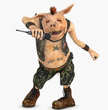 Punk pig toon Stock Image