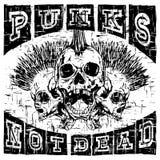 Punk rock t-shirt design_4. Vector illustration skulls of punk with mohawk on abstract grunge background. Inscription punks not dead. For t-shirt design Stock Photos
