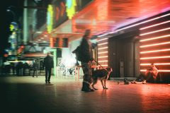 Punkowy Reeperbahn Hamburg psa nocy przyjęcia turysta fotografia royalty free