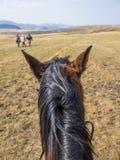 Punkt av sikten sköt av ett basutoponnyhuvud från ett hästryttareperspektiv, berg av Lesotho, Afrika Royaltyfria Foton