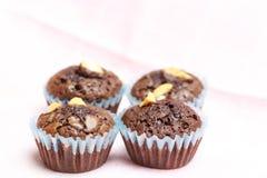 Punkt filiżanki torta czekolady dokrętka Obrazy Royalty Free
