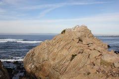 Punkt Joe, Pebble Beach, 17 mil drev, Kalifornien, USA Royaltyfri Bild