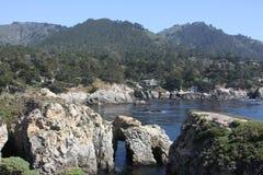 Punkt Lobos Fotografia Royalty Free