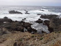Punkt Lobos, Kalifornia Obrazy Royalty Free