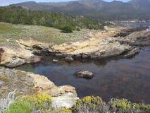 Punkt Lobos, Kalifornien Arkivbilder