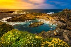 Punkt-Lobos-Nationalpark Kalifornien Stockbilder