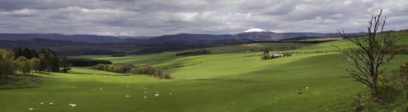 punkt obserwacyjny panoramy królowych widok Fotografia Stock