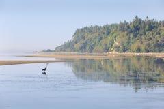 Punkt Roberts Dawn, Washington State Royaltyfri Foto