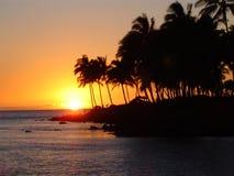 Punkt am Waikokloa Strandurlaubsort stockfoto