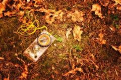 Punkt zwrotny w wiosna lesie Zdjęcie Royalty Free