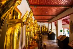 Punkt zwrotny, zakończenie W górę Pięknej Czarnej Buddha statuy, trwanie Buddha statua, Złota statua Świątynny Wat Pho w Azja Ban Fotografia Stock