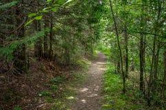 PunktAuRoche delstatspark Royaltyfri Bild