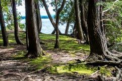 PunktAuRoche delstatspark Arkivfoto