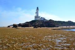 Punktu Lonsdale latarnia morska obrazy royalty free