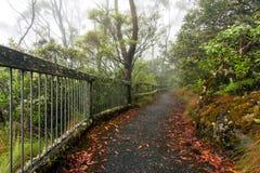 Punktu punkt obserwacyjny, Nowa Anglia park narodowy, AU Zdjęcie Royalty Free