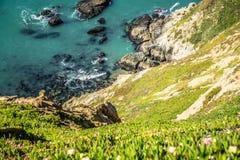 Punktu Reyes seashore krajowy wybrzeże na pokojowym oceanie Fotografia Royalty Free