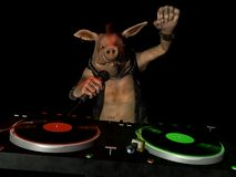 Punky Hog DJ Royalty Free Stock Images