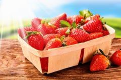 Punnet av saftiga stora mogna jordgubbar royaltyfri fotografi