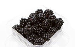 Punnet of Blackberry Royalty Free Stock Photography