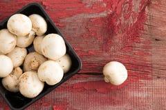Punnet of fresh white button mushrooms Stock Photos